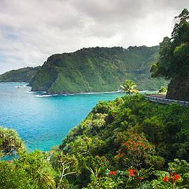 Avis Car Hire Maui Hawaii