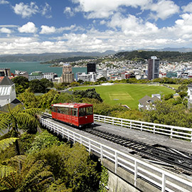 Wellington Car Rental