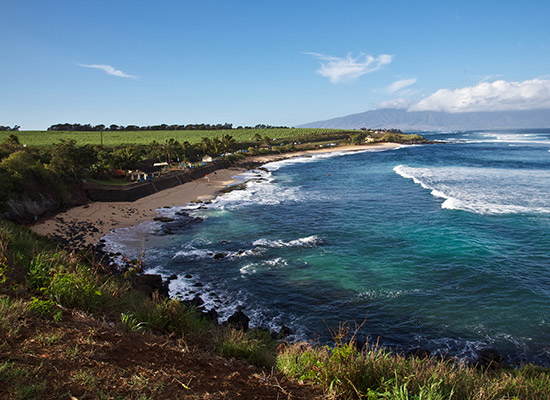 Venture to Upcountry Maui